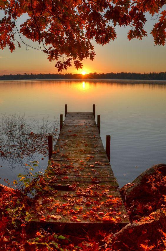 Herbst Die Zeit Loszulassen
